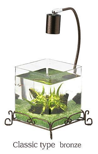 熱帯魚飼育水槽ブロンズ