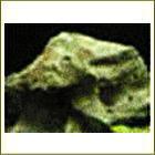ブラウン系天然石